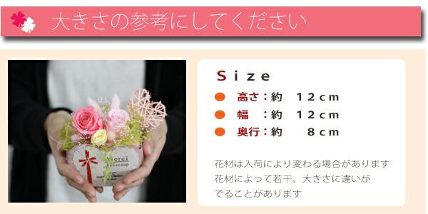 naturalheart_size.jpg