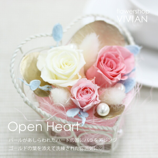 openheart_main.jpg