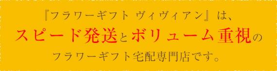 『フラワーギフト ヴィヴィアン』は、スピード発送とボリューム重視のフラワーギフト宅配専門店です。