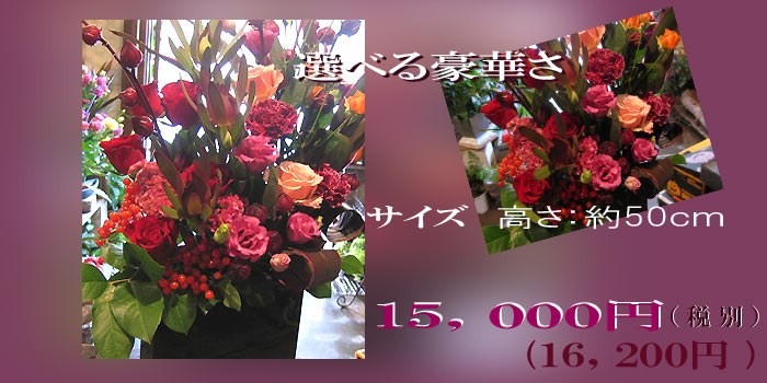 imgrc0069049334.jpg