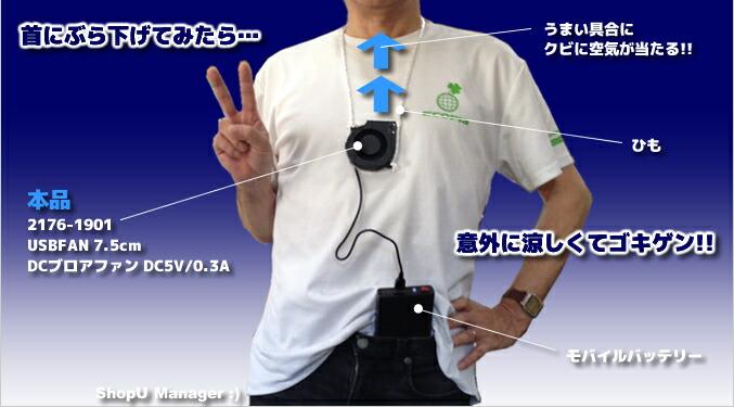 USBFAN 7.5cm DCブロアファン DC5V 0.3-0.4A
