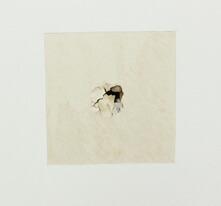 空いた穴の周りの壁紙に切り込みを入れ剥がします。