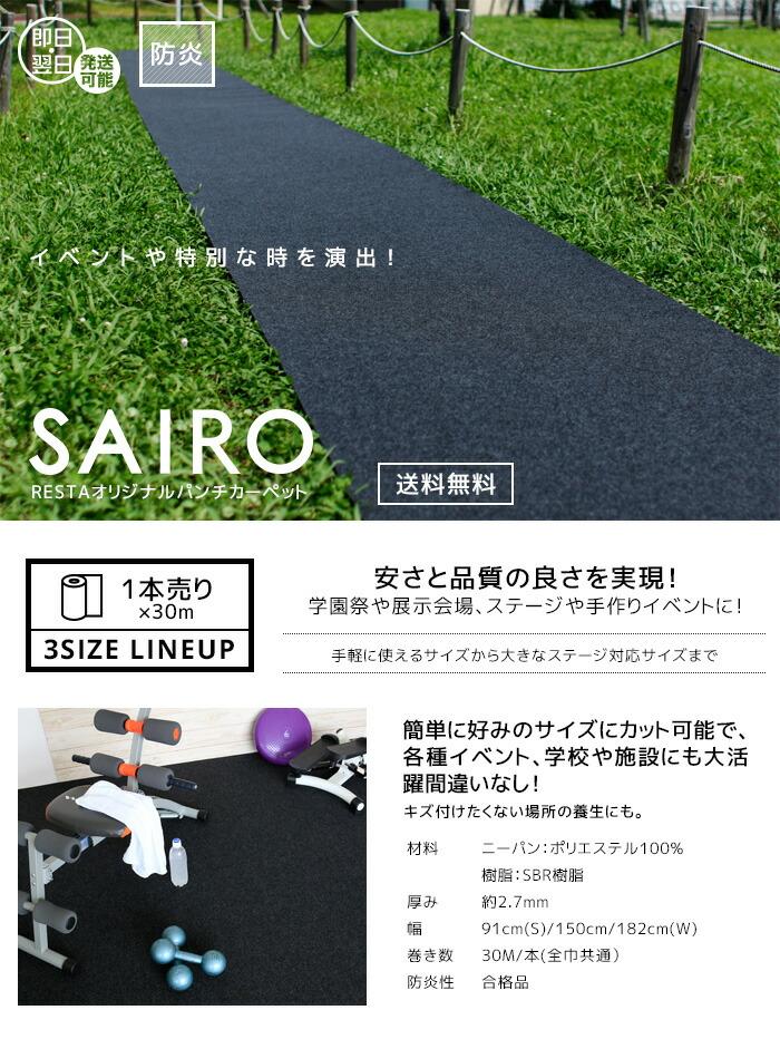 パンチカーペット SAIRO1