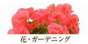 ◆花・ガーデニング