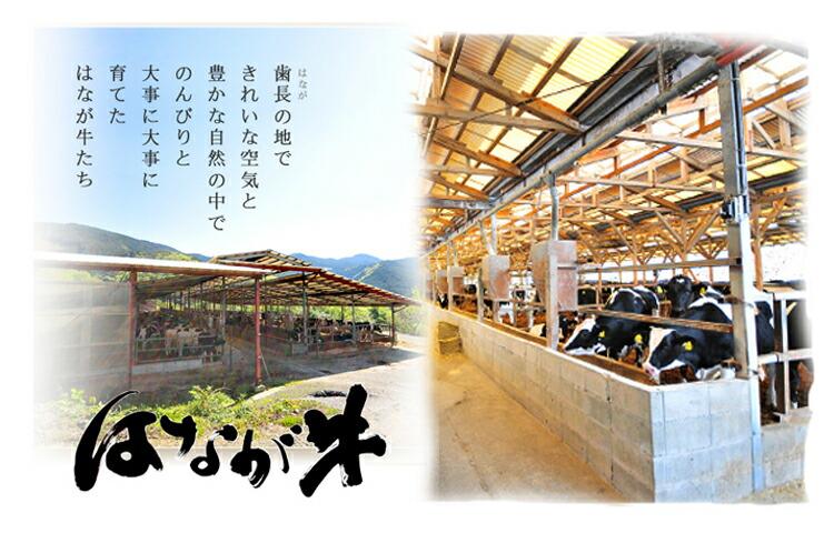 【送料無料】愛媛県特産品はなが牛サーロインステーキ2枚(約220g×2枚)《お取り寄せグルメ》