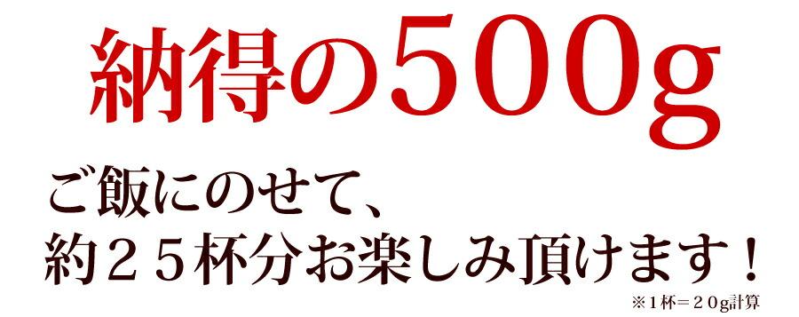 納得の500g