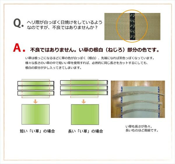 ユニット畳 置き畳 4.5畳 82×82cm 正方形 半畳 国産い草