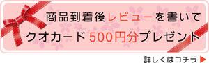 レビューを書いてクオカード500円プレゼント