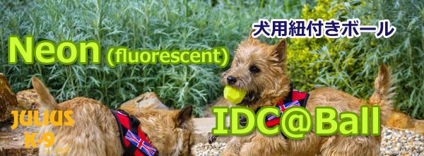 IDC@Ball
