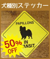 50%OFF トランジットステッカー