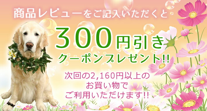商品レビューを記載で300円引きクーポンプレゼント