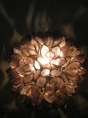 Asian Style Lighting wanon | rakuten global market: suit made of seashells cute asian