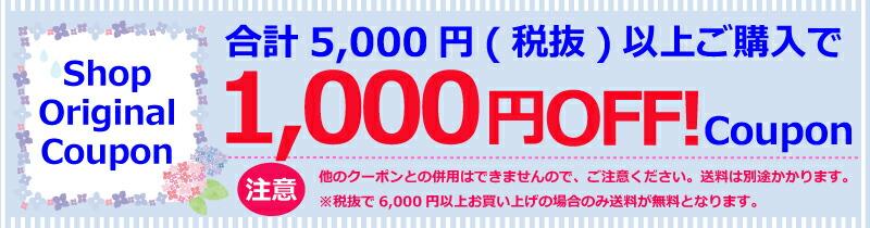 5000円で1000円OFFクーポン