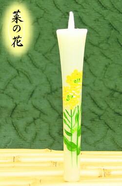 菜の花 3号2本入