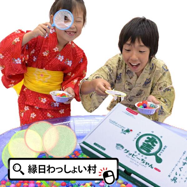 今だけあす楽便! すくい枠 グッピーちゃん5号 100本入 並の紙 日本製 ポイキャッチ すくい用品 金魚 金魚すくい スー…