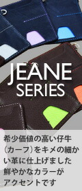 ジェーンシリーズ