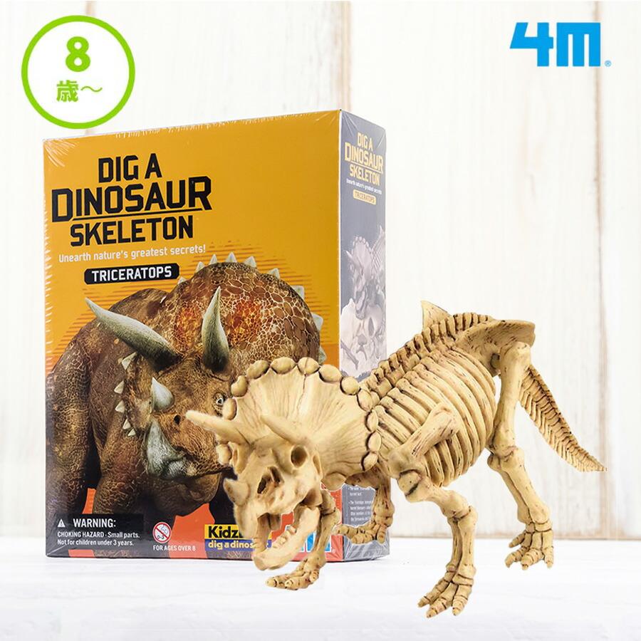発掘・組立 トリケラトプス