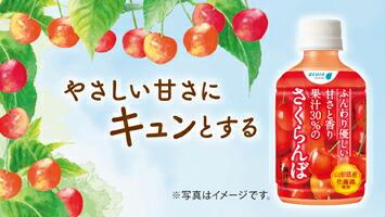 果汁30%のさくらんぼ