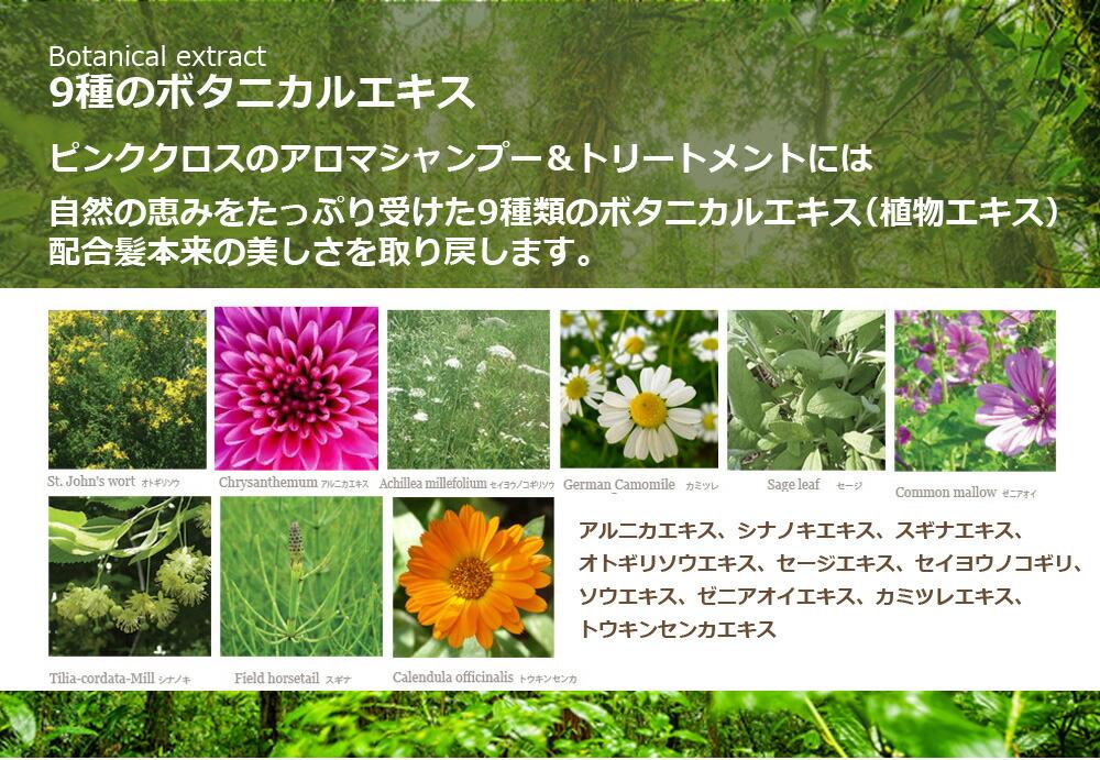 Botanical extract9種のボタニカルエキスピンククロスのアロマシャンプー&トリートメントには自然の恵みをたっぷり受けた9種類のボタニカルエキス(植物エキス)配合髪本来の美しさを取り戻します。アルニカエキス、シナノキエキス、スギナエキス、オトギリソウエキス、セージエキス、セイヨウノコギリ、ソウエキス、ゼニアオイエキス、カミツレエキス、トウキンセンカエキス