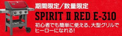 スピリット2 RED E-310