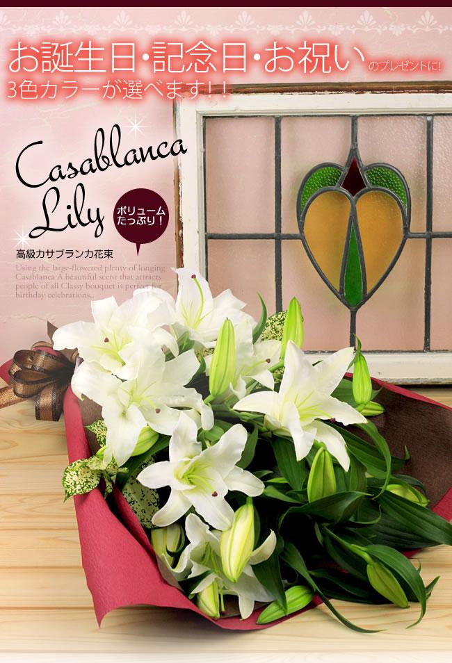 お誕生日・記念日・お祝いのプレゼントに!3色カラーが選べます!!ボリュームたっぷり!高級カサブランカ花束