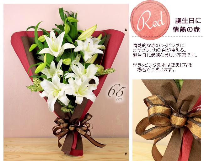 誕生日に 情熱的な赤のラッピングにカサブランカの白が映える。誕生日に最適な美しい花束です。ゴールドのリボンが高級感をアップさせています。