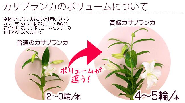 カサブランカのボリュームについて 高級カサブランカ花束で使用しているカサブランカは1本に対し、4〜5輪の花が付いており、ボリュームたっぷりの仕上がりになりますよ。