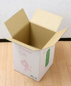 boxpl4c.jpg