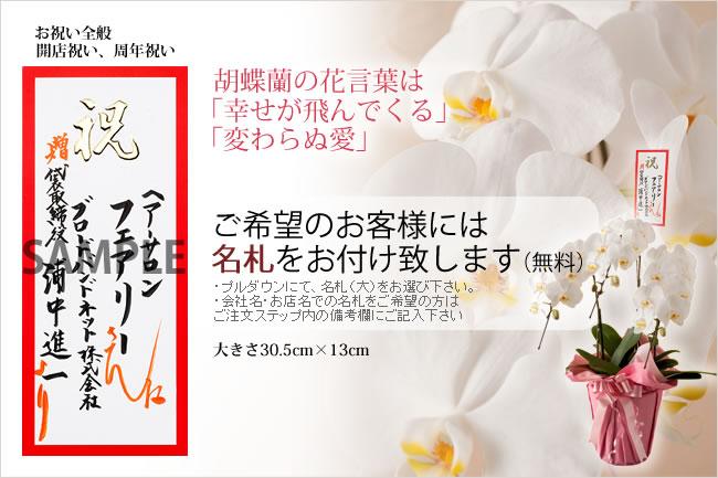 胡蝶蘭の花言葉は「幸せが飛んでくる」「変わらぬ愛」ご希望のお客様には名札をお付け致します。