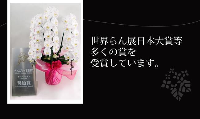 14kesyou-r11.jpg
