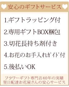 11-haha-gs1.jpg