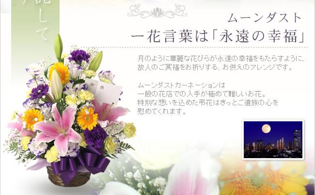 ムーンダスト ー花言葉は「永遠の幸福」月のように華麗な花びらが永遠の幸福をもたらすように、 故人のご冥福をお祈りする、お供えのアレンジです。ムーンダストカーネーションは一般の花店での入手が極めて難しいお花。特別な想いを込めた弔花はきっとご遺族の心を慰めてくれます。