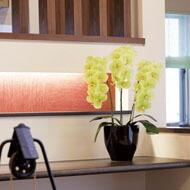 光触媒 人口観葉植物 造花 アートフラワー 光の楽園 胡蝶蘭タイプ