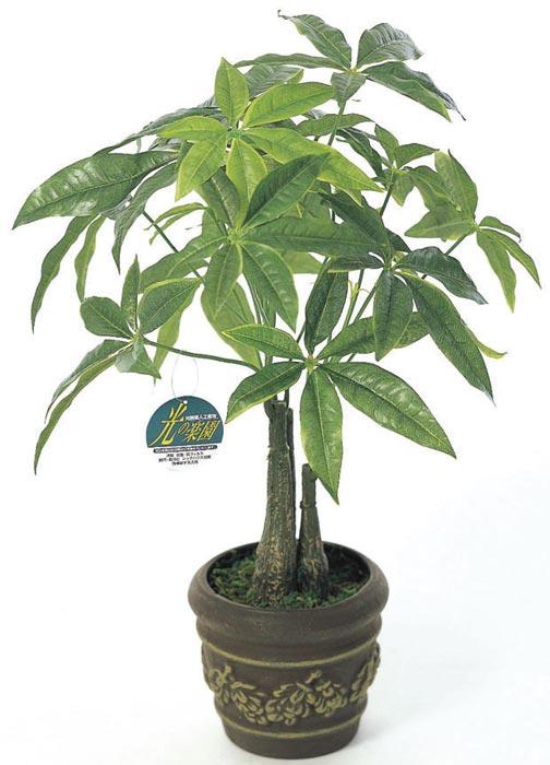 アートグリーン 人工観葉植物 光触媒 光の楽園 パキラポット 252E40