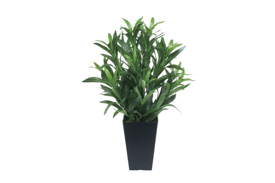 アートグリーン 人工観葉植物 インテリア 光触媒 光の楽園 フレッシュアンスリューム 3A5306-35【2013年版】