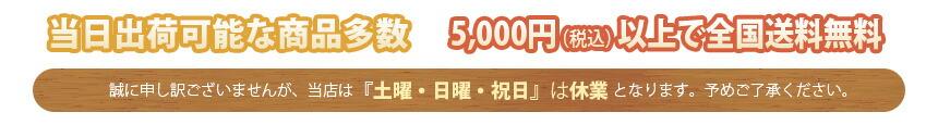 当日出荷可能な商品多数/5,000円(税込)以上で全国送料無料