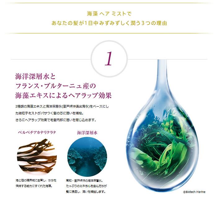 海藻ヘアミスト
