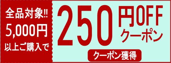 250円クーポン