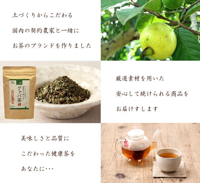 カフェリラ グァバ茶 ミネラル フラボノイド ノンカフェイン