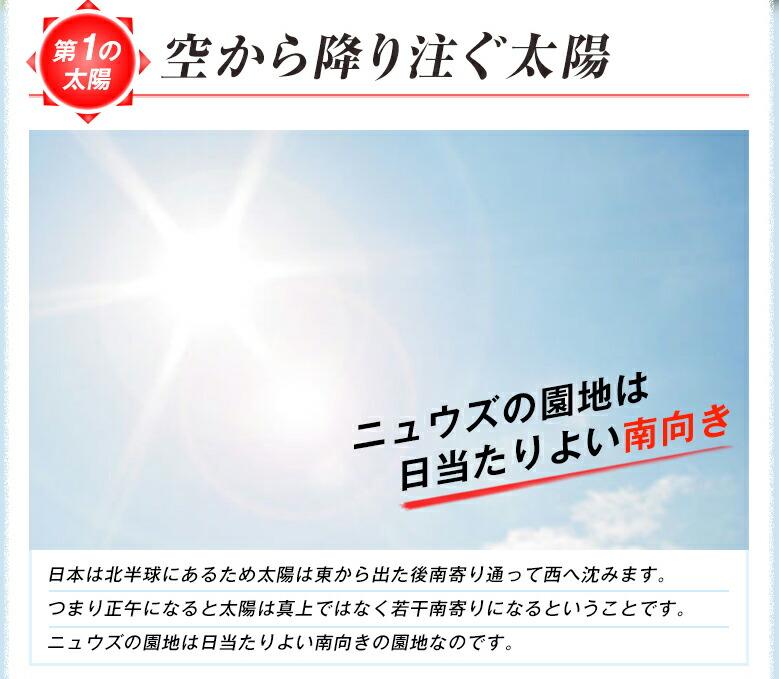 空から降り注ぐ太陽