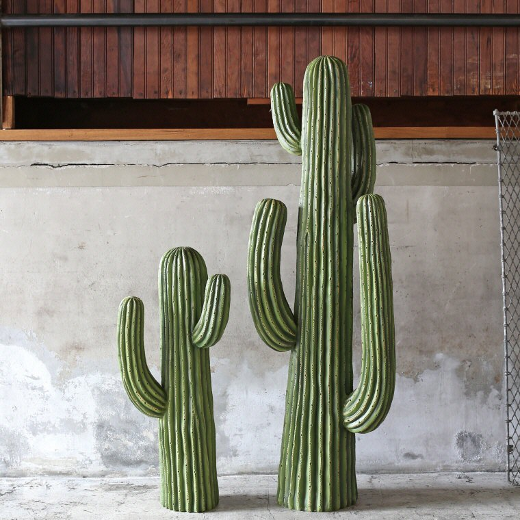 楽天市場 送料無料 cactus type a カクタス タイプ a サボテン