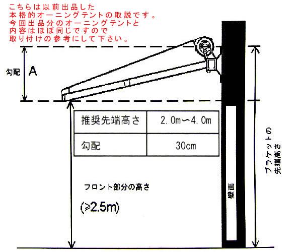awni-7.jpg