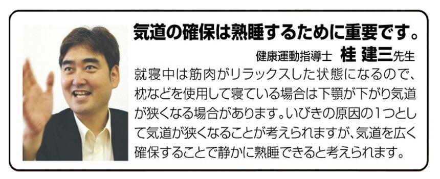 イビピタン ネックピロー2個組【新聞掲載】