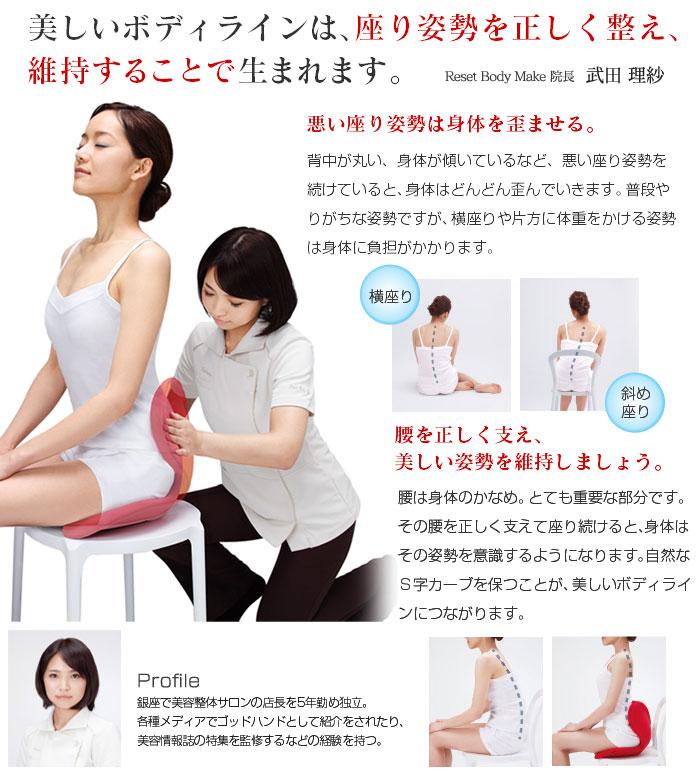 正規品 スタイル メイクシート 姿勢 ボディメイクシート スタイル 椅子 座椅子 送料無料 MTG 猫背 すたいる ボディ Body Make Seat Style 【A】 あす楽