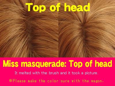 Top of wig