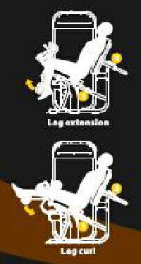 レッグエクステンション/レッグカール