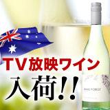 TV放映ワイン入荷!!