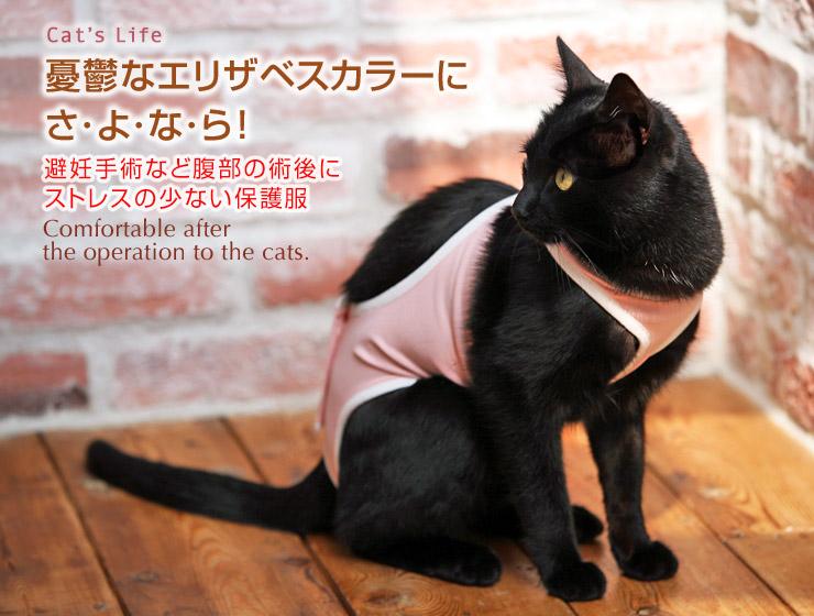 猫の暮らし 術後ガードスーツキャット 避妊手術 エリザベスカラー 保護服 術後服
