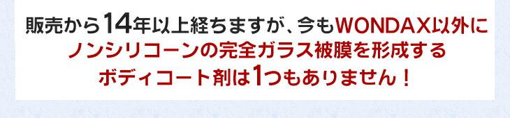 wondax-1_170113_04.jpg