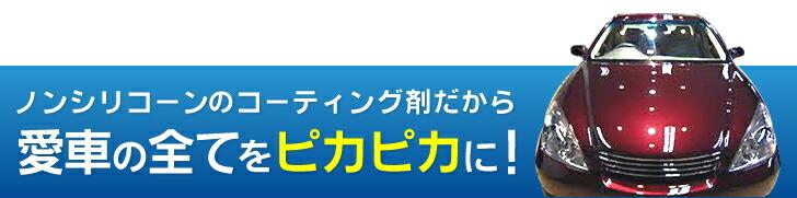 wondax-1_170113_08.jpg